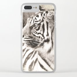 A Tigers Sketch 2 Clear iPhone Case