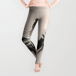 triumph with girl Leggings