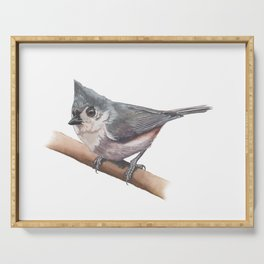 Tufted Titmouse Serving Tray