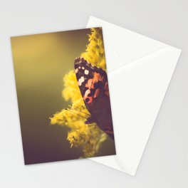 Sunlit Butterfly Stationery Cards