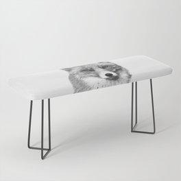 Black and White Fox Bench