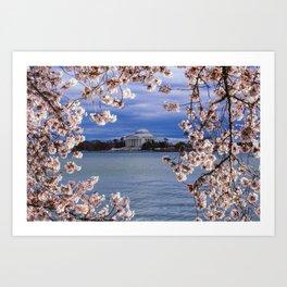"""""""Jefferson through the Blossoms"""" - DC Cherry Blossom Festival Art Print"""