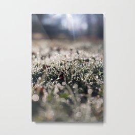 Faerylights Metal Print