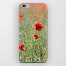poppy flower no8 iPhone Skin