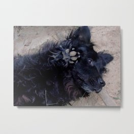 Talk to the paw! Metal Print
