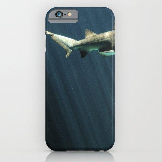 Shark iPhone & iPod Case