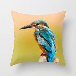 Radiant Bird Throw Pillow