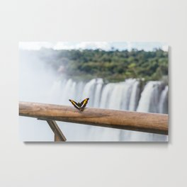 Butterfly over Iguazu Falls, Argentina Metal Print