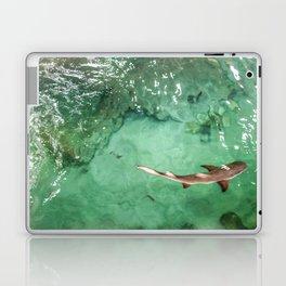 Look at the Shark Laptop & iPad Skin