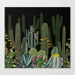 Cactus Garden at Night Canvas Print