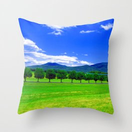 Moving Fast Throw Pillow