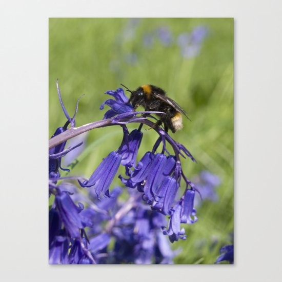 Bee on a mission Canvas Print