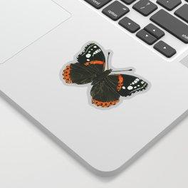 Admiral butterfly ink illustration Sticker