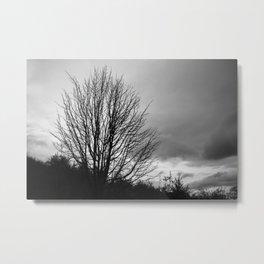 Deadly monochromatic tree Metal Print