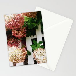 Philocaly Stationery Cards