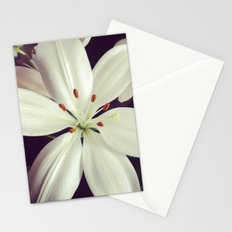 lilys Stationery Cards