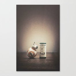 BB-Peat Canvas Print
