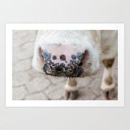 noise of an cow Art Print