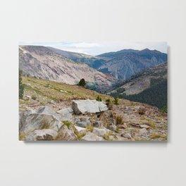 Yosemite Mountain View Metal Print