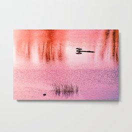 Ripples, reed, reflections,red Metal Print