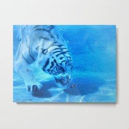 Diving Tiger Metal Print