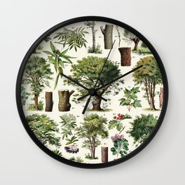 Adolphe Millot - Arbres A - French vintage botanical poster Wall Clock