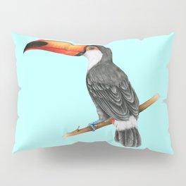 Hornbill Bird - Blue Pillow Sham