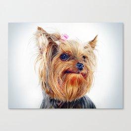 Super Pets Series 1 - Super Treble 2 Canvas Print