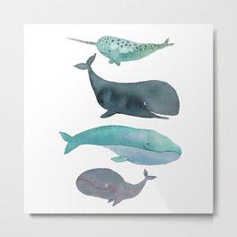 I love whales Metal Print