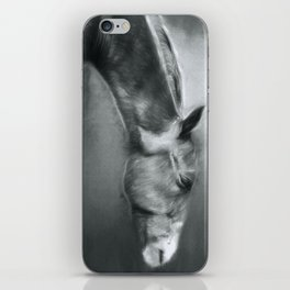 Horse Profile iPhone Skin