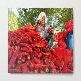Turkish Woman Preparing Red Peppers Metal Print