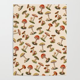 Magical Mushrooms Poster