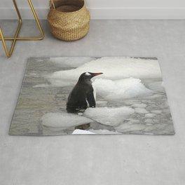 Gentoo Penguin in Ice Rug