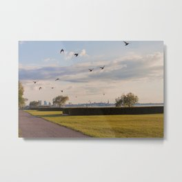 HyperReality Shift. Starling Flyover. Metal Print