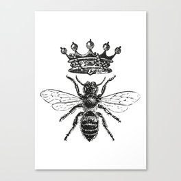 Queen Bee   Black and White Canvas Print