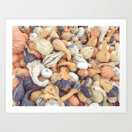 Muted Gourds II Art Print