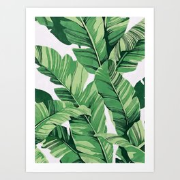 Tropical banana leaves V Art Print