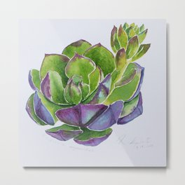 lovely Succulent Plants No.6 Metal Print