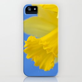 Narcissus close-up iPhone Case