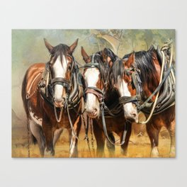 Clydesdale Conversation Canvas Print