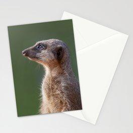 Meerkat Centurion Stationery Cards