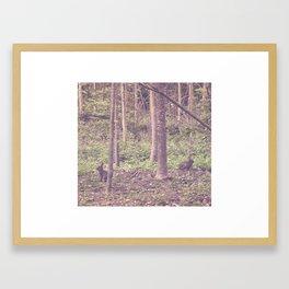 les lapins Framed Art Print