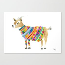 Goat in a Sweater Canvas Print