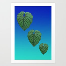 Australica Exotic Lush Leaf Art Print