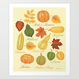 Gourds and Pumpkins Art Print