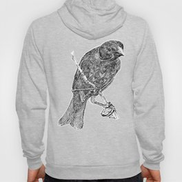 Lovely Bird Hoody