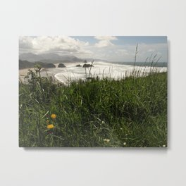 Oregon  Metal Print