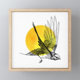 Chase the Sun Framed Mini Art Print