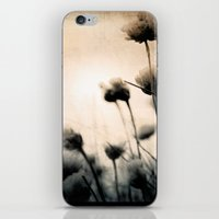 wild things iPhone & iPod Skins featuring wild things by Dorit Fuhg