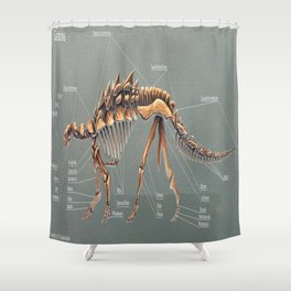 Gastonia Burgei Skeletal Study Shower Curtain